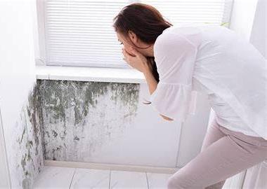 Muffa sulla parete-individuare rapidamente la fonte che causa la muffa